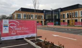 Red Tree Starts at Dow